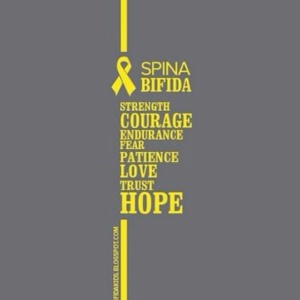 spina bifida courage